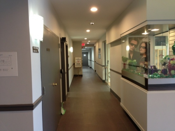corridor medical centre painting services